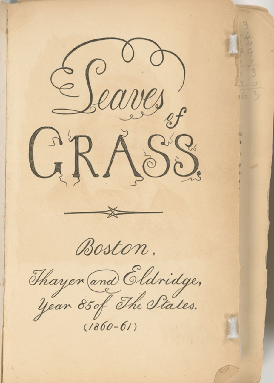 Leaves of Grass (Boston- Thayer and Eldridge, year 85 of the States, 1860) (New York Public Library)