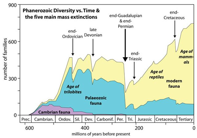 earth and major evolutionary changes The evolution of life on earth natural selection is not fully sufficient to explain evolutionary change for two major reasons first.
