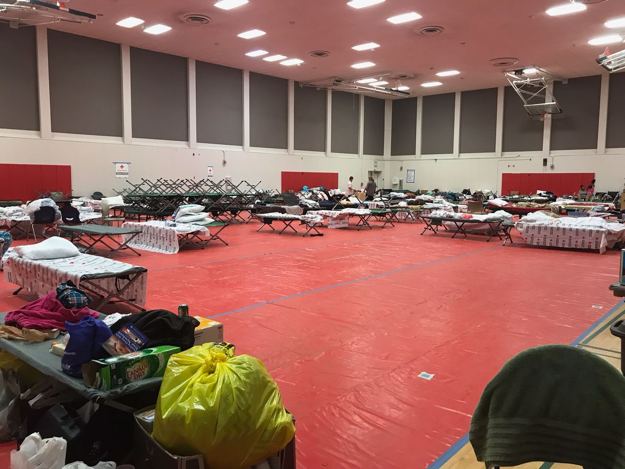 A Red Cross shelter at Pierce College