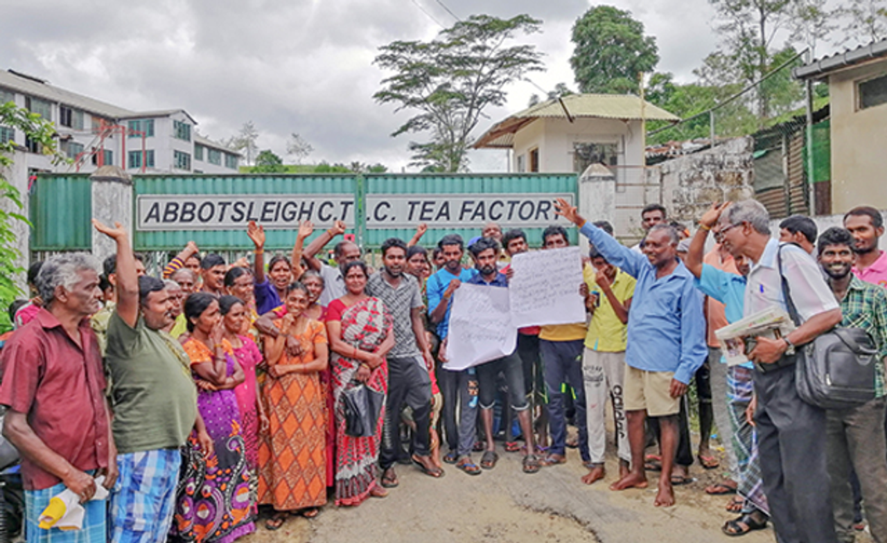 Abbotsleigh Tea Plantation Workers Send Support To North American Autoworkers